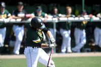 wsu-lake-campus-lawrence-tech-baseball-004