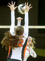 coldwater-versailles-volleyball-008