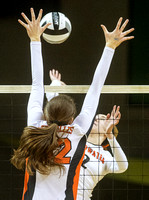 coldwater-versailles-volleyball-007