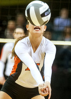 coldwater-versailles-volleyball-003