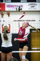 coldwater-st-henry-volleyball-004