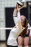 coldwater-st-henry-volleyball-007