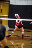 coldwater-st-henry-volleyball-006